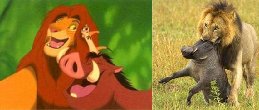 lion-king-is-a-lie
