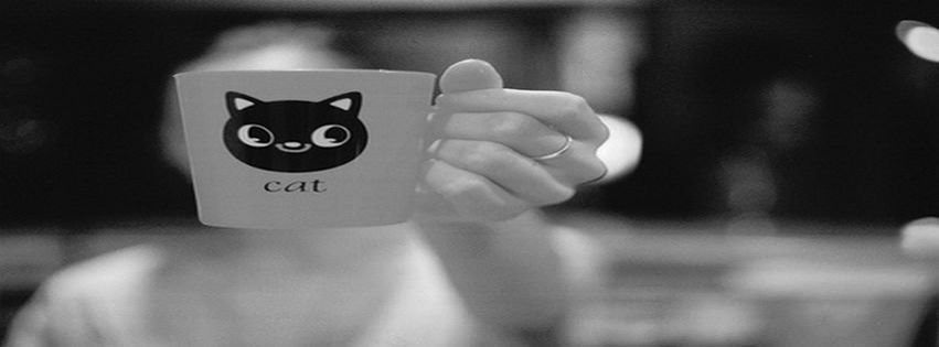 Fb Covers Black and white cat dreams fashion