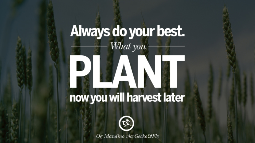 Inspirational Motivational Poster Quotes on Sports and Life Always do your best. What you plant now, you will harvest later. - Og Mandino instagram twitter reddit pinterest tumblr facebook