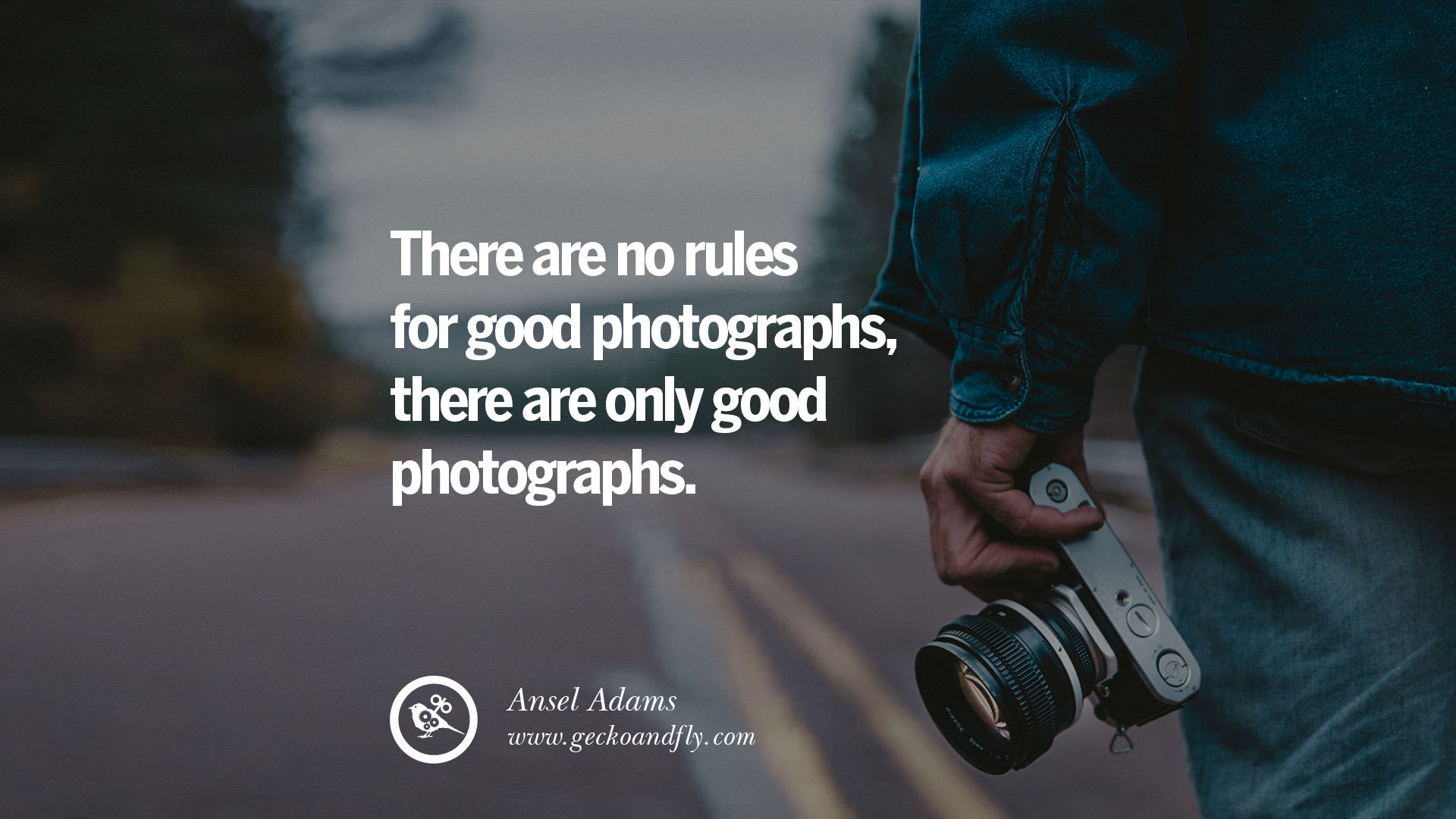 Inspirational Photography Quotes 20 Quotes About Photographyfamous Photographer  Geckoandfly 2018