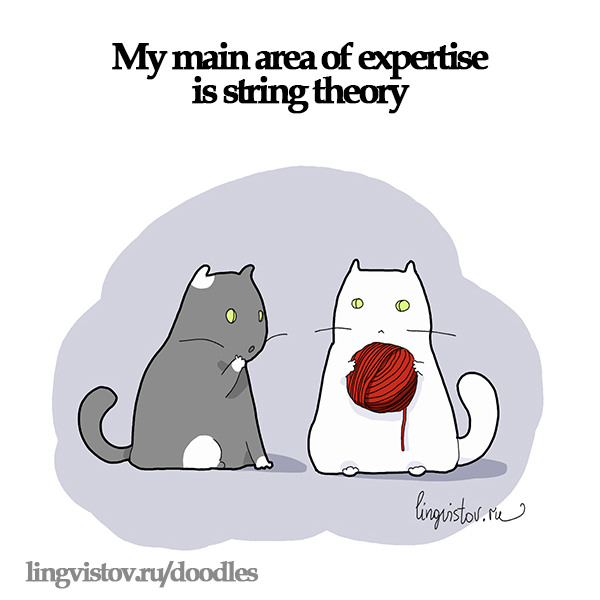 My main area of expertise is string theory. 40 Funny Doodles For Cat Lovers and Your Cat Crazy Lady Friend grumpy tom talking nyan instagram pinterest facebook twitter comic pictures youtube