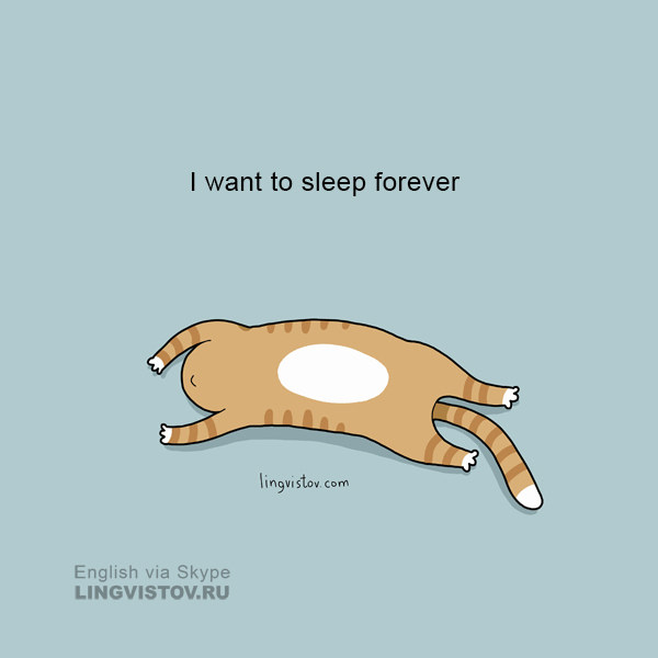 I want to sleep forever. 40 Funny Doodles For Cat Lovers and Your Cat Crazy Lady Friend grumpy tom talking nyan instagram pinterest facebook twitter comic pictures youtube