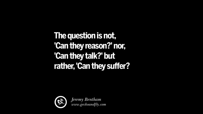The question is not 'Can they reason?' nor, 'Can they talk?' but rather, 'Can they suffer?' - Jeremy Bentham