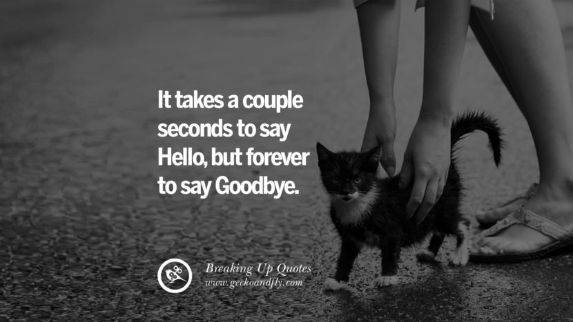 It takes a couple seconds to say Hello, but forever to say Goodbye. best facebook tumblr instagram pinterest inspiring Quotes On Getting Over A Break Up After A Bad Relationship