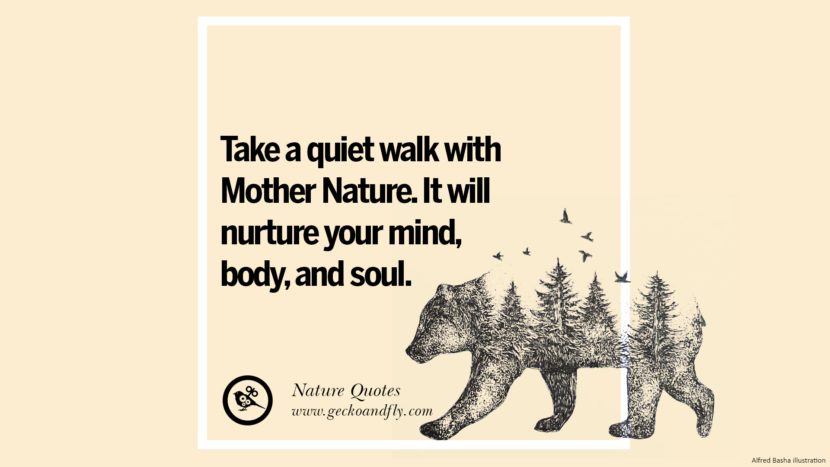 Take a quiet walk with mother nature. It will nurture your mind, body, and soul. Beautiful Quotes About Saving Mother Nature And Earth
