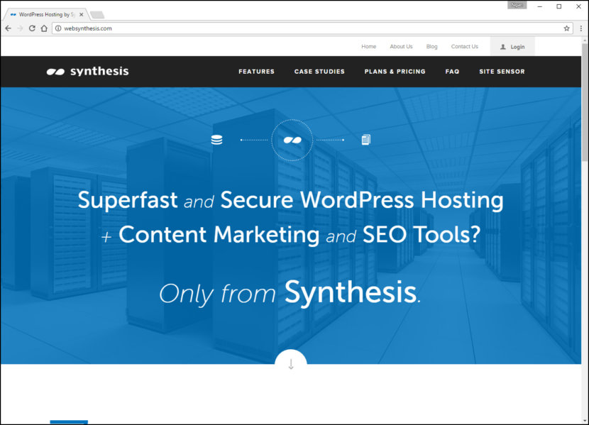 Synthesis Fastest WordPress Hosting With Varnish Cache, CDN & Daily Backup