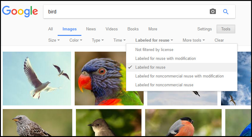 10 Best Royalty Free Websites With High Resolution Stock Photos Images And Pictures