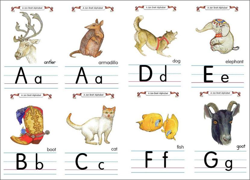 Jan Brett Flashcard Alphabet