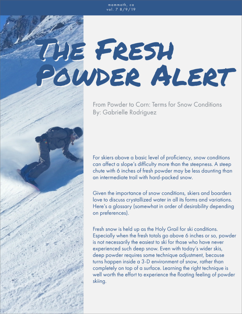 snow Screenshot of free printable newsletter template for school and communities