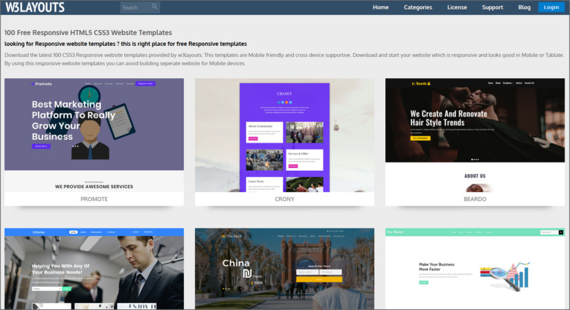 W3Layouts Free Professional HTML5 Responsive Templates